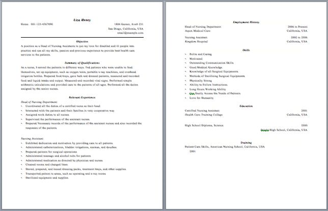 Resume With Multiple Pages - Vision professional
