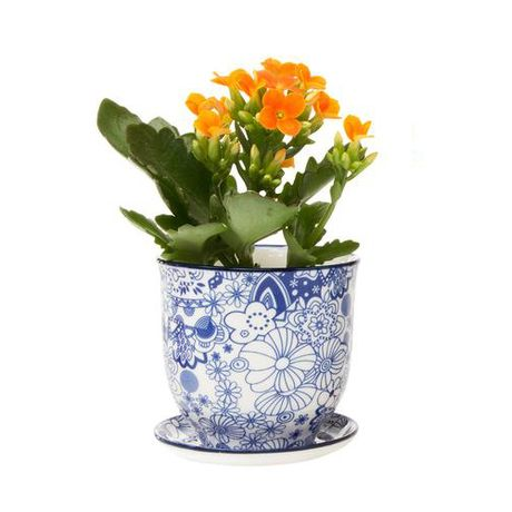 Modeled after classic teacups, this Brighton Pot and Saucer Planter will make a…