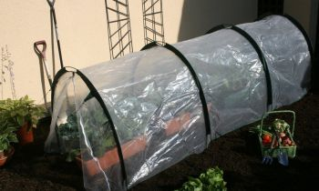 Small Polytunnel 5m