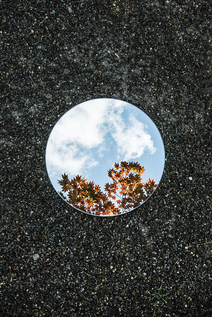 Symmetry And Silence In Round Mirror Reflections More info: sebastianmagnani.com
