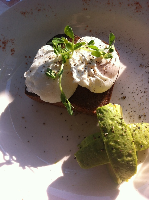 Poached eggs on rye with avocado