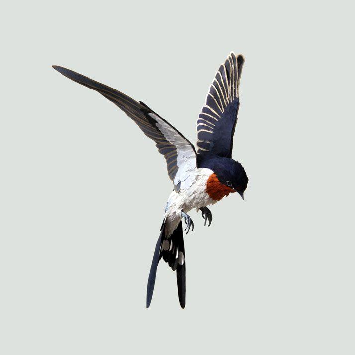Realistic Bird Paper Sculptures | Artist: Diana Beltran Herrera