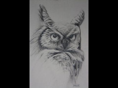 Hoe teken je een Uil - realistisch / dieren tekenen / #11 - YouTube