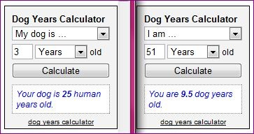 Dog Years Calculator -- find out your dog's age in human years, or your age in dog years. (You don't just multiply by 7!)
