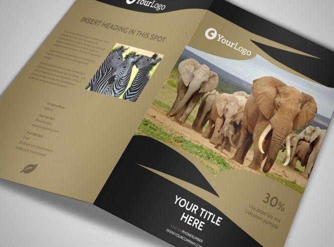 African Safari Brochure Template 2 | Accra, Ghana | Pinterest