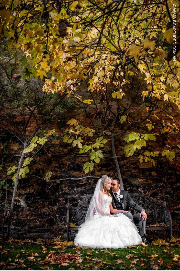 Garden Wall. #GlenEwinEstate #Weddings #bridal #adelaidehills #photos #Pulpshed #gardenwall