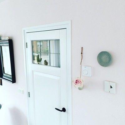 een spiegel op de woonkamer deur aan de binnenkant, met metalen strips zodat het daar in valt, maar ook zodat het een ruit lijkt, mooi voor extra licht en het lijkt veel mooier aan buitenkant van de deur een aantal latjes zodat het een paneeldeur lijkt