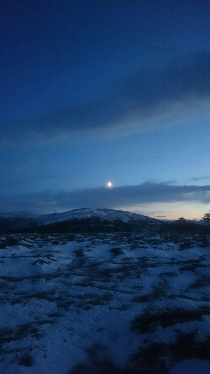 Moon's up,lights down