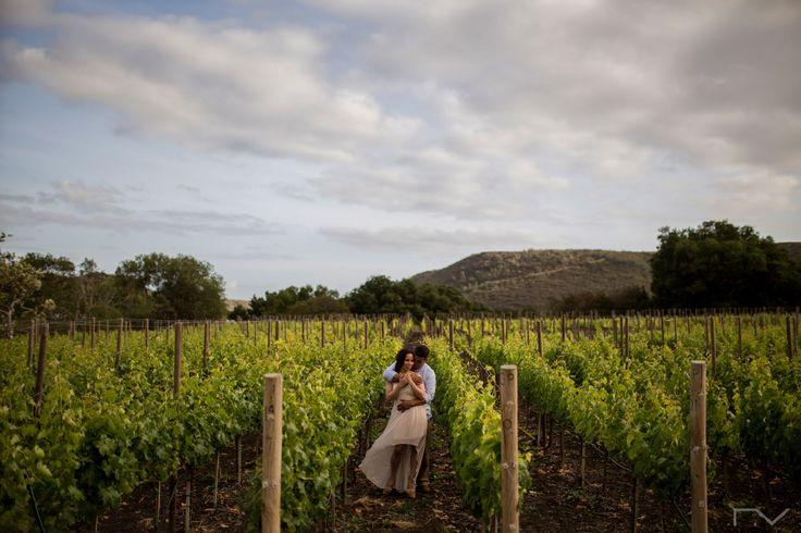 Los 14 lugares más románticos en Ensenada y la Ruta del Vino