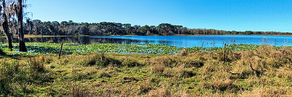Lake Dan PanoramaA panoramic view of Lake Dan and surrounding scenery. Lake Dan is located in The Lake Dan Nature Preserve. The area was formally ranchland before the... more  by John Trommer