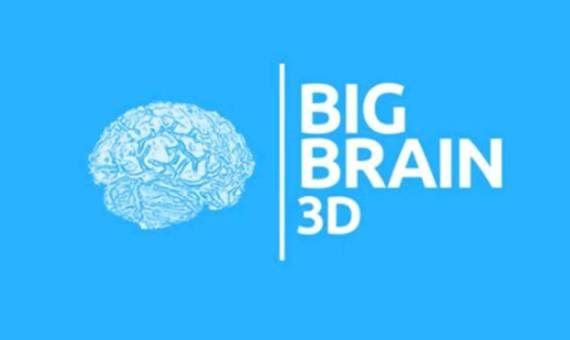 """BigBrain es un modelo en 3D y alta resolución: un """"Google Earth"""" del cerebro gratis. Este """"atlas"""" descubre nuevas """"fronteras"""" entre las áreas de la corteza."""