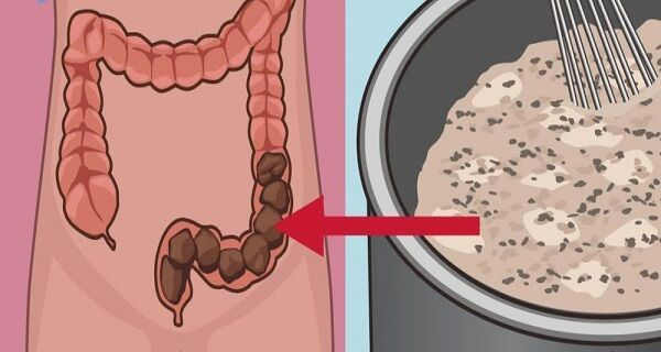 "HOMEMADE MIXTURE THAT WILL CLEAN YOUR COLON OF TOXIC WASTE - Go Fit Stay Fit --- ""Apple Honey Remedy:::  INGREDIENTS:::  1 cup of water; 1 tbsp. of organic honey; 1 tbsp. of Chia seeds; 1 tbsp. of flax seed; 1 apple."""