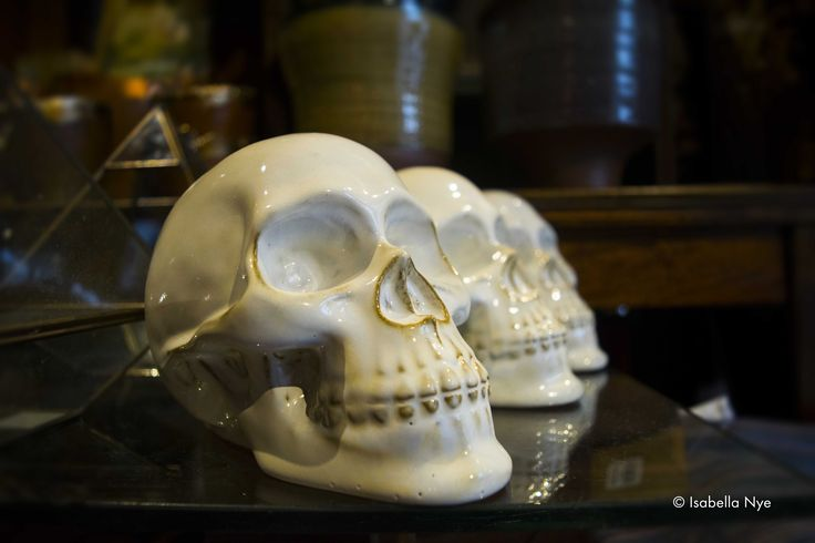 #skulls #indoor #art #hippyshop #white #contrast #skull #closeup #seattle #photography #nikon #dslr #washington #america