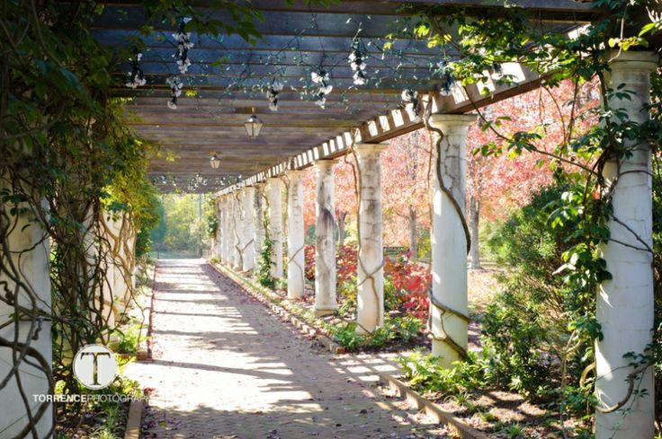 1000 Images About Great Gardens On Pinterest Gardens Villas And Sculpture