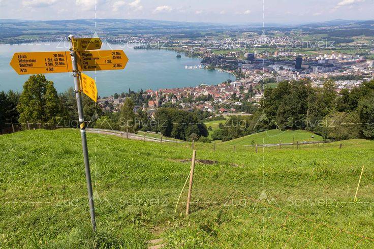 Wanderweg am #Zugerberg mit Blick auf die Städte #Zug, Steinhausen ZG und #Cham ZG in der Schweiz (Switzerland)