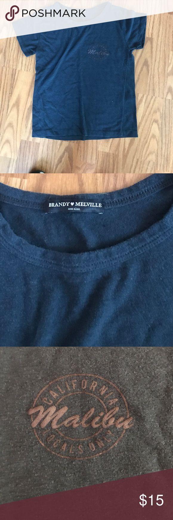 Brandy Melville crop shirt! Malibu brandy Melville shirt never worn Brandy Melville Tops Crop Tops