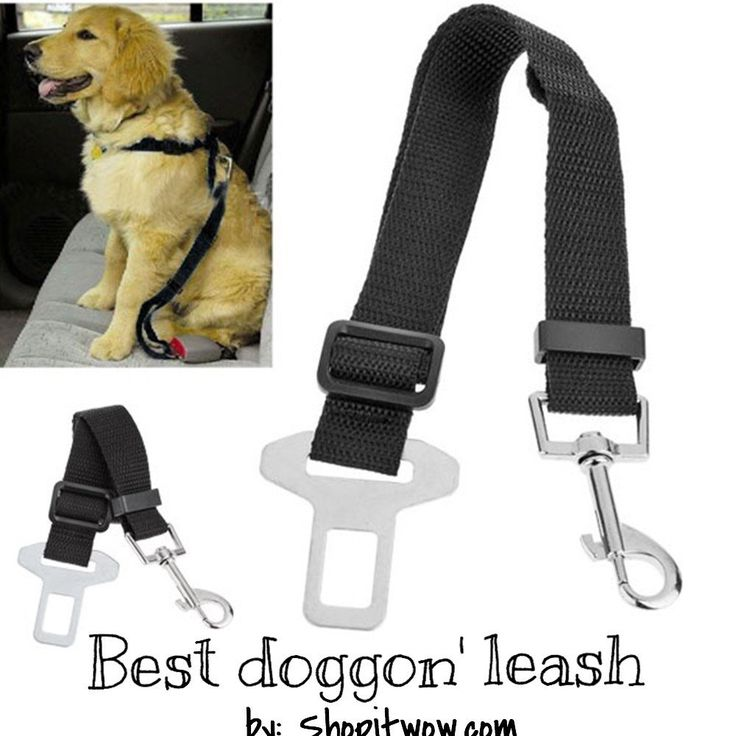 "Dog Safety Harness, Belt and Clip Black, Blue, Red, Orange, Hotpink, Green Type: Dog Car Seat Belts Features: Vehicle adjustable seat belt collars for pets Length: 28"" Material: Nylon Weight: 40 g Ite"