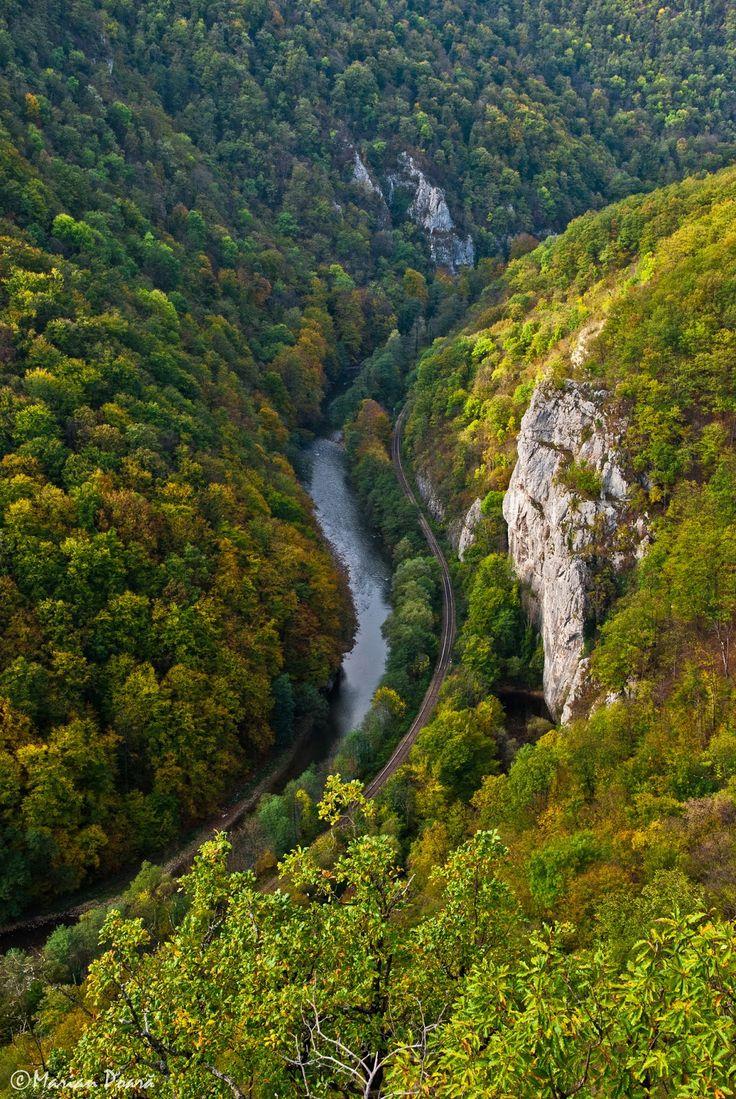 Banda Roşie: Versantul drept al Defileului Crișului - munții Pădurea Craiului (26 octombrie 2014)