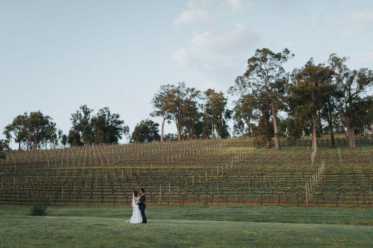 Millbrook Winery | Weddings - September | Ebony Blush Photography