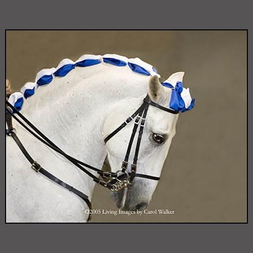 : Equine Beauty, Equine Queue, Beautiful Braids, Decorated Horses, Braid Ideas, Horse Art, Horse Braids, Horse Management, Horse Braiding