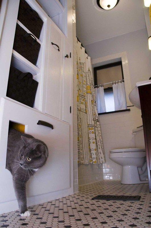 23 best Litter Box built ins images on Pinterest | Built ins, Cat ...