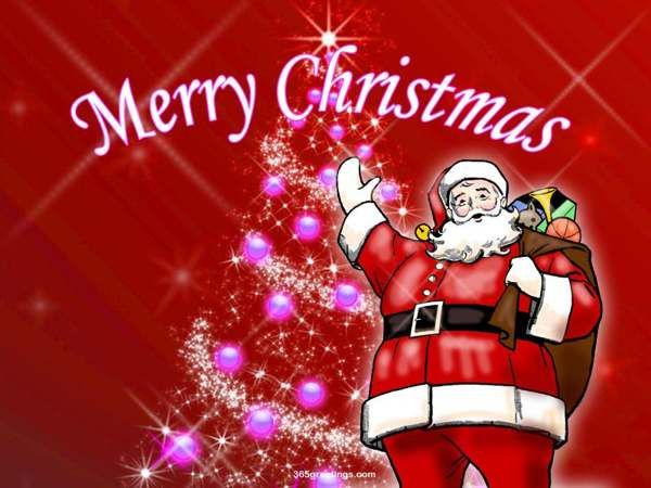 1000 Merry Christmas Wishes Quotes On Pinterest: 17 Best Merry Christmas Quotes On Pinterest
