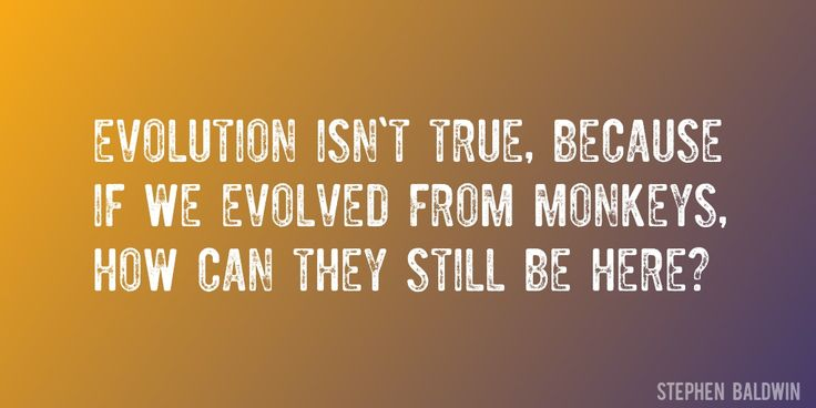 Quote by Stephen Baldwin => Evolution isn't true, because if we evolved from monkeys, how can they still be here?