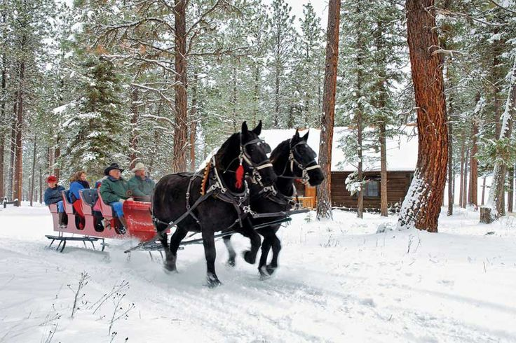 pin snow ride carriage - photo #18
