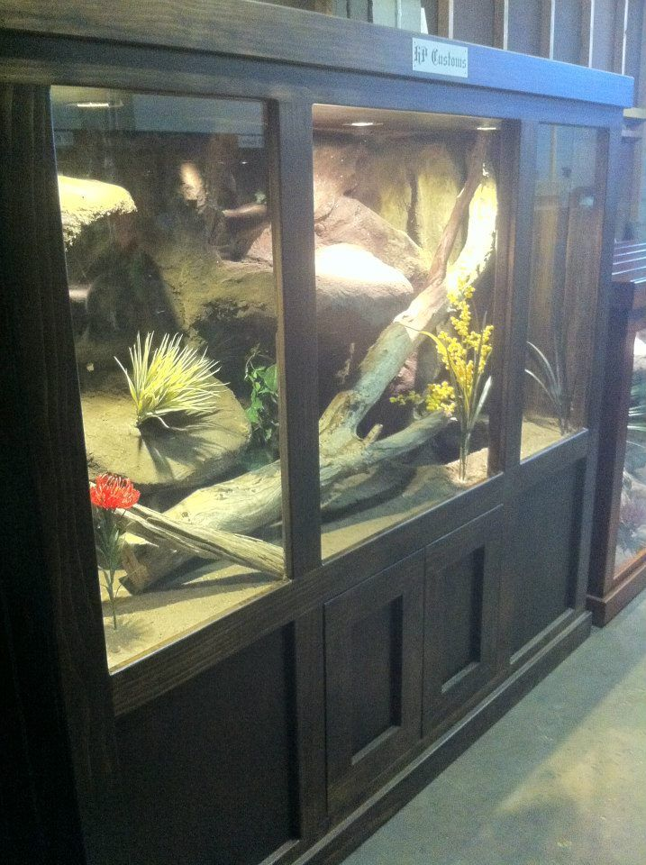This Enclosure Is Fully Custom Made And Has Cupboards