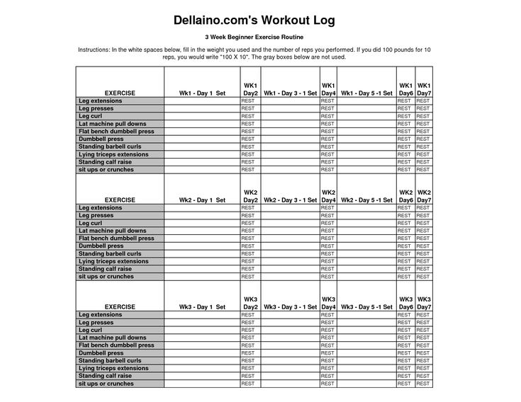 workout journal excel