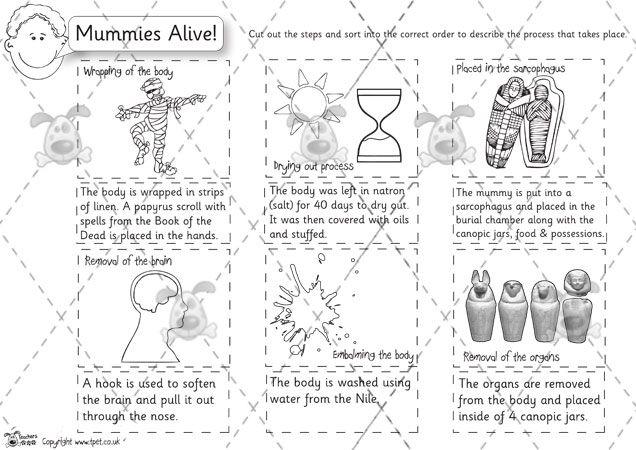 Teacher's Pet - Mummification Sequence and Description (b&w ...