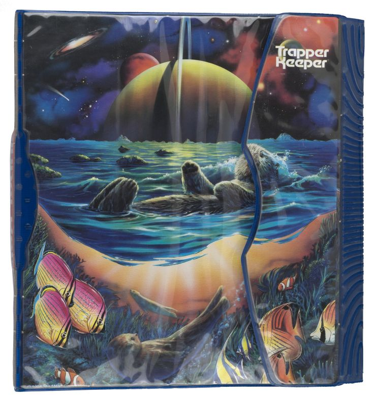 Who Remembers This Trapper Keeper® Binder?