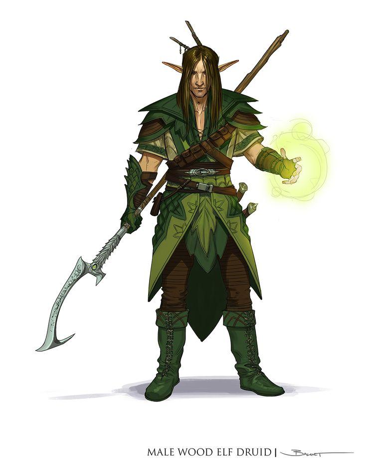 O Cavaleiro da Floresta