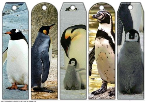 JJ ASSORTED BOOKMARKS PENGUINS by Joy Jerome an a4 sheet with five assorted bookmarks with a penguin theme each one different from the others. Just print and cut.