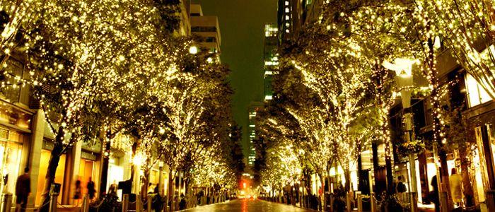 """Marunouchi Illumination 2013. 丸の内イルミネーション. 有楽町と大手町を結ぶ約1.2kmに及ぶ丸の内仲通り沿いの街路樹約240本が、上品に輝く丸の内オリジナルカラー""""シャンパンゴールド"""" 色のLED約104万球に照らしだされます。"""