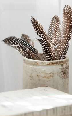 So simple--black and white feathers in a vintage crock. We're always finding and collecting feathers, might as well decorate with them.