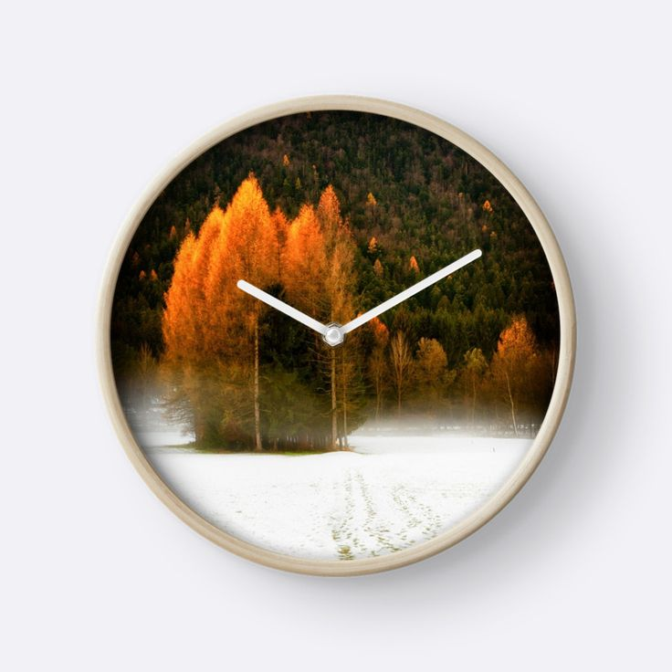Group of pine trees in the mist by Silvia Ganora - #wallclock #clocks #trees #nature #homedecor #winter #pinetrees
