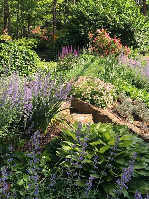 You can create a beautiful front yard garden by repeating plants, using a few colors and changing the textures of plants near each other. Find out more.