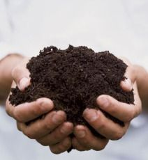 compost junkie website with awesome info and how tos