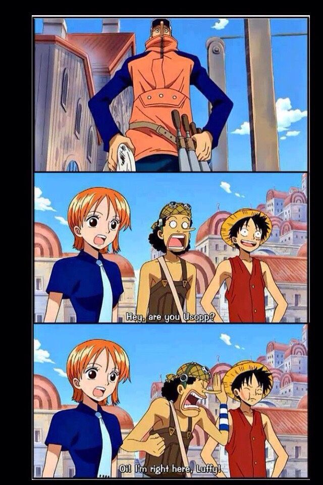 | Nami, Luffy, and Usopp | Luffy being Luffy. That's it.