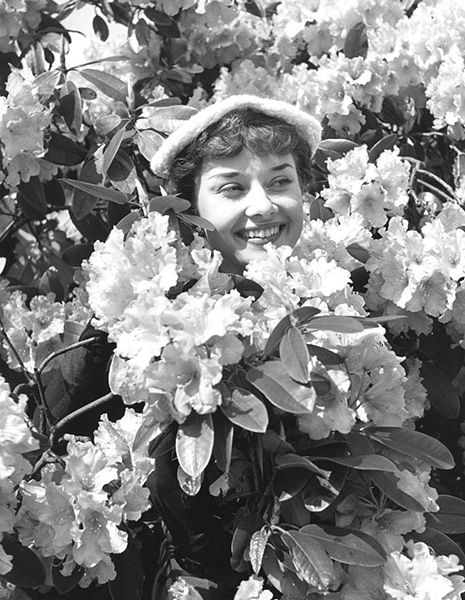 """To plant a garden is to believe in tomorrow."" ―Audrey Hepburn"