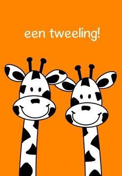 Tweeling geboortekaartjes Giraffe, ook in andere kleuren mogelijk. De goedkoopste geboortekaartjes online ontwerpen en bestellen via http://www.geboortepost.nl/geboortekaartjes/tweeling/happy-giraffe-twins-on-orange-rh.html