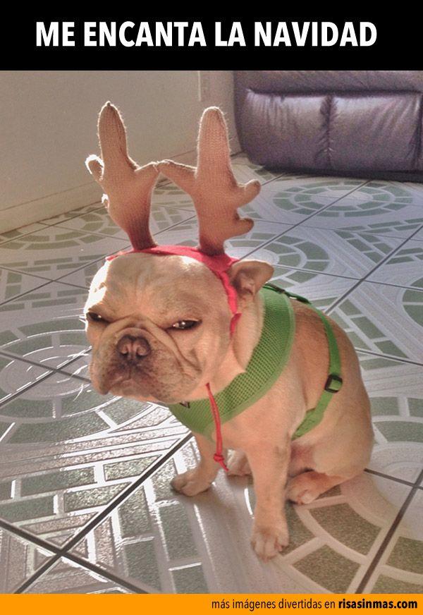Me encanta la Navidad