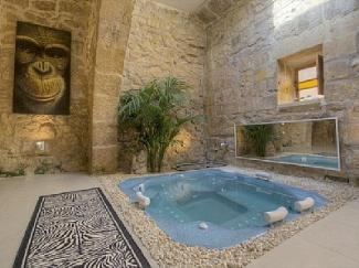 Jacuzzi In The Living Room