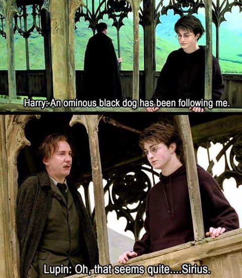 When you realise that if Harry had been a bit more open, most books would have been over in a few lines.