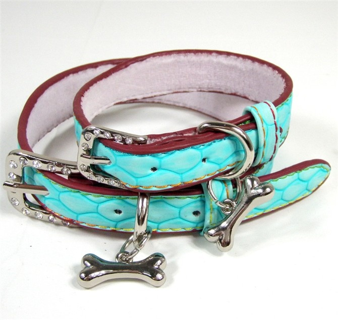 Oli Collars For Dog On Sale