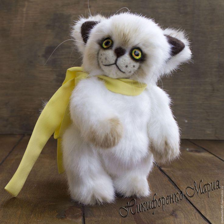 Купить Котенок  тедди Бонька - котик тедди, котик-тедди, настоящий тедди, тедди кот