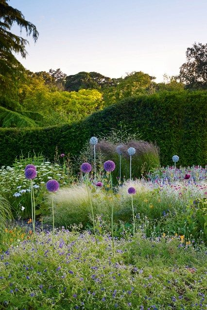 Dot Your Border With Alliums - in Country Garden Design Ideas - how to a create a well-planned herbaceous border and farmhouse or cottage…