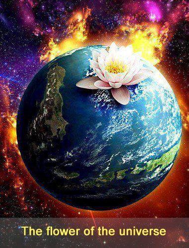 El mundo es una Rosa que florece en la Cruz inmanifestada del universo.