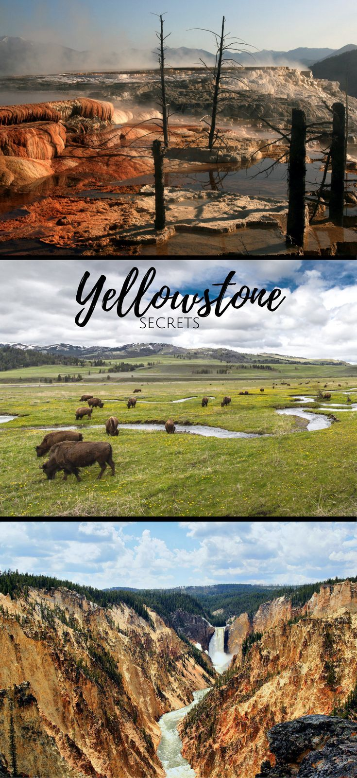 secrets around yellowstone, from ghost towns to fly fishing